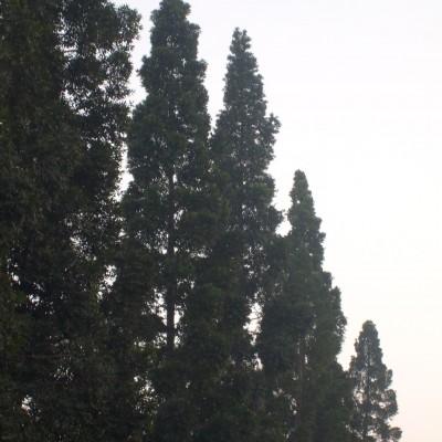 Pemandangan langit Dago, Bandung